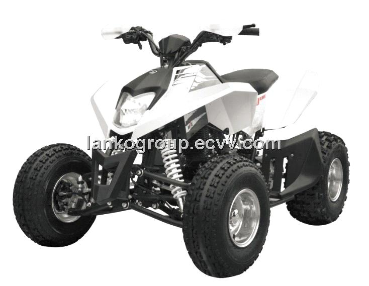 ATV/UTV/Pocket Bike/Dirt Bike/Go Kart /Dune Buggy  250CC WaterCooled 4-Stroke