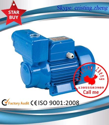 TPS Series Electric Self-Sucking Water Pump
