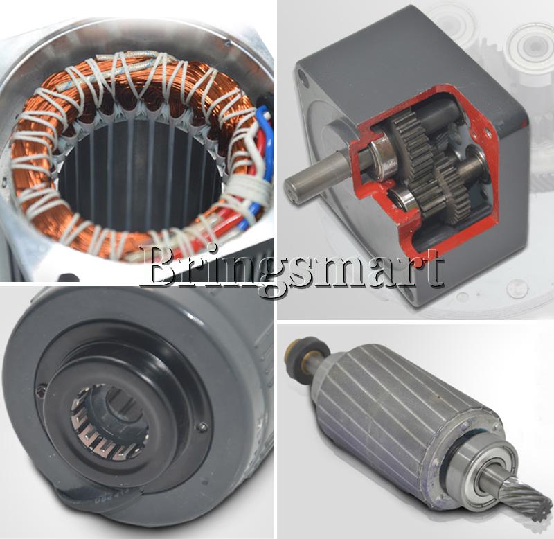 Bringsmart 220V AC Gear Motor 6W Single Phase Reversing