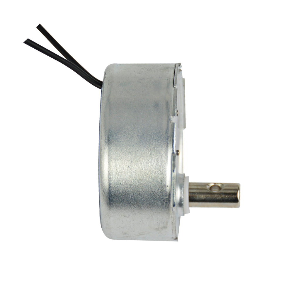 Aiyima 2PCS Claw Pole Permanent Magnet Synchronous AC 220V~240V Motor 5/6r/min