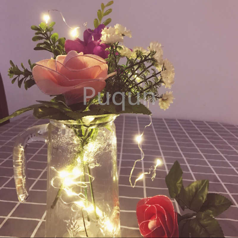 10pcs/lot CR2032  Cell Battery Operated 2m 20LED LED String Light Waterproof Led Fairy Christmas PartyWedding Light