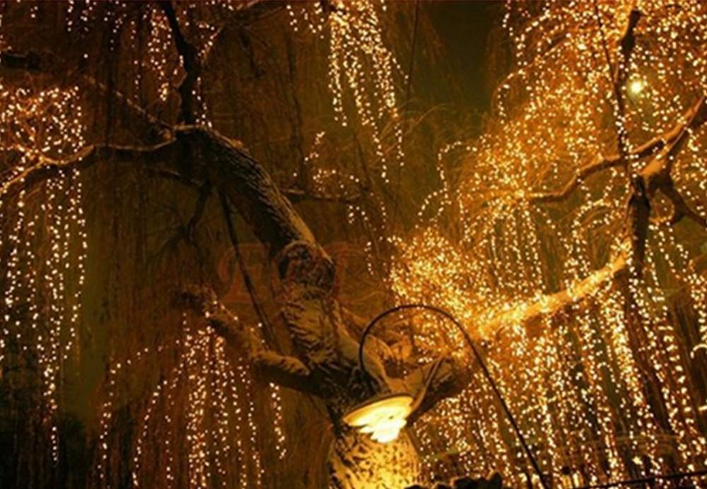 iTimo 100 LED 10M Outdoor Lighting String Fairy Lights Lamps Christmas Wedding Decoration US Plug Home Decoration Party Supplies