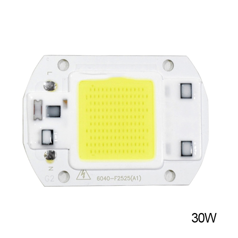 20W 30W 50W LED Chip 110V 221V LED COB Bulb Chip Input IP65 Smart IC Fit For DIY LED Flood Light LED Modules