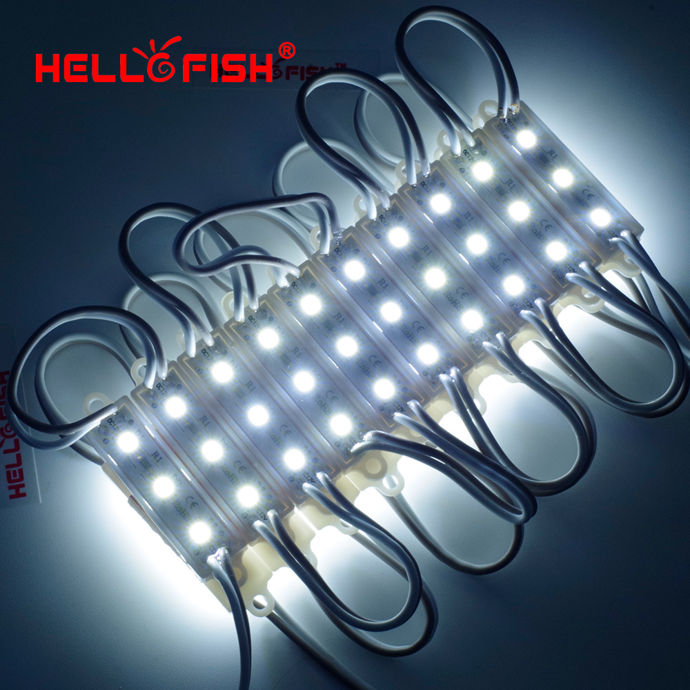 Hello Fish 20pcs DC12V 2835 Modules 4010 Advertising Modules Luminous characters, backlight modules IP65 Waterproof
