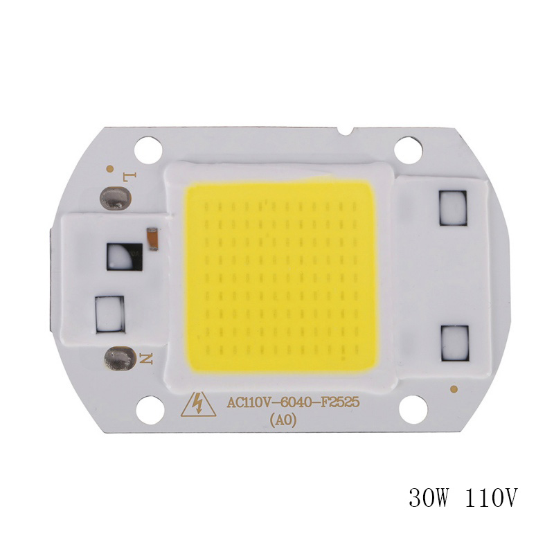 20W 30W 50W LED Chip 220V LED COB Bulb Chip Input IP65 Smart IC Fit For DIY LED Flood Light LED Modules High Quality