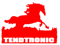 Tendtronic Corporatioan Limited