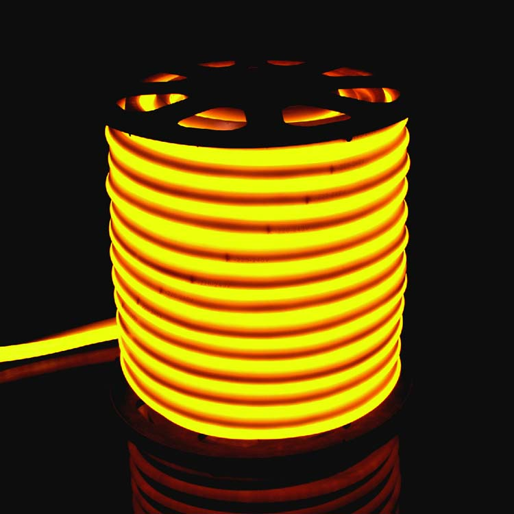 Led Neon Lights For Rooms 12v 24v 120v
