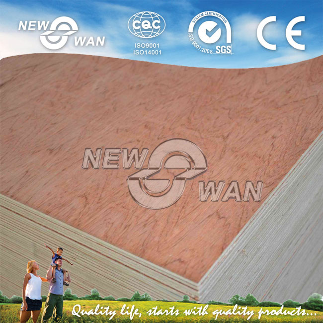 Standard Size BB/CC 18mm Bintangor Plywood for Dubai Market