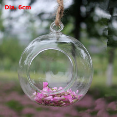 Top Popular Glass Ball Terrarium Candle Holder And Vase Beautiful