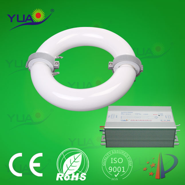 circular soft light high PF induction pendent lamps for factory