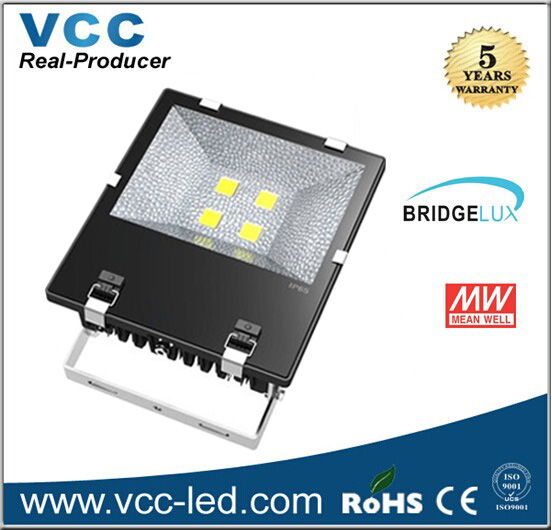 10W 30W 50W 70W 100W 120W 150W 200W Bridgelux Meanwell Driver Led Floodlight
