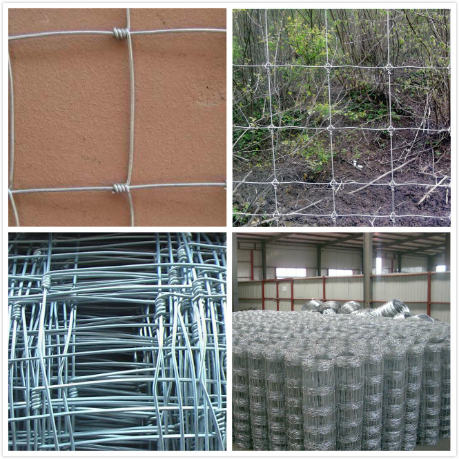 Galvanized or Stainless Wire Grassland or Field Fence