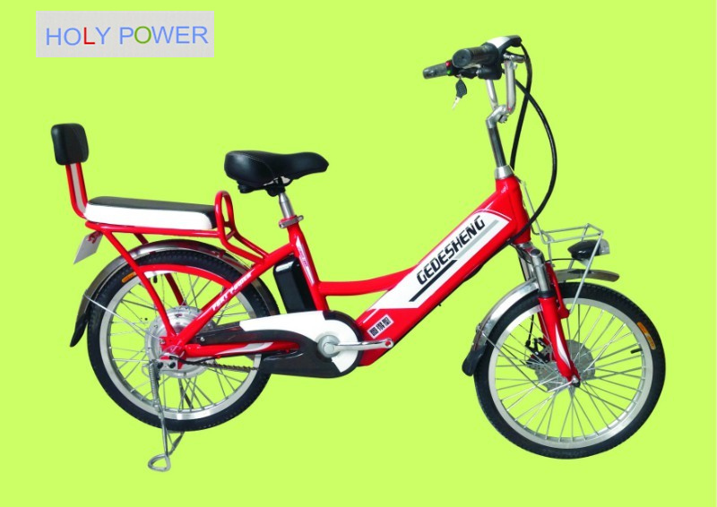 GDS CB06 48V Electric Bicycle ,250W brushless motor