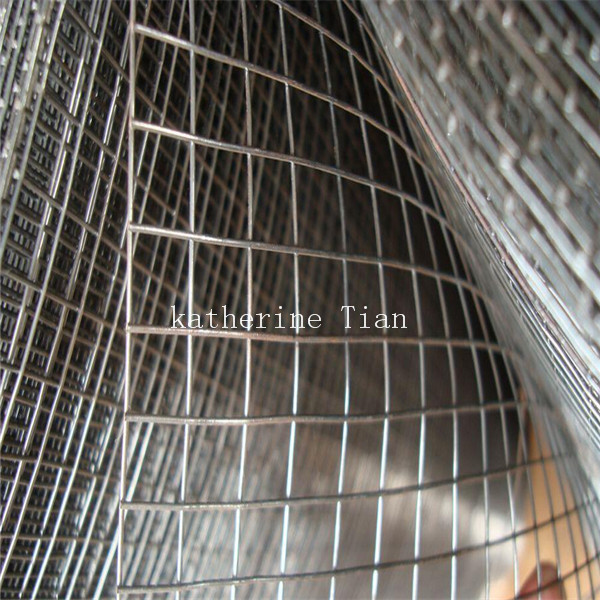 2x2 Galvanzied Welded Wire Mesh Panels Purchasing Souring