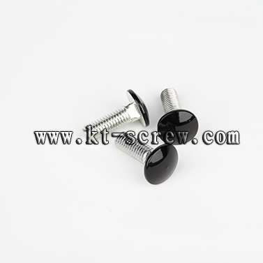 carriage bolt laptop screw (with ISO card)