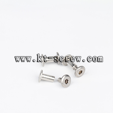 stainless steel hex socket chicago screw for electrical hair driver