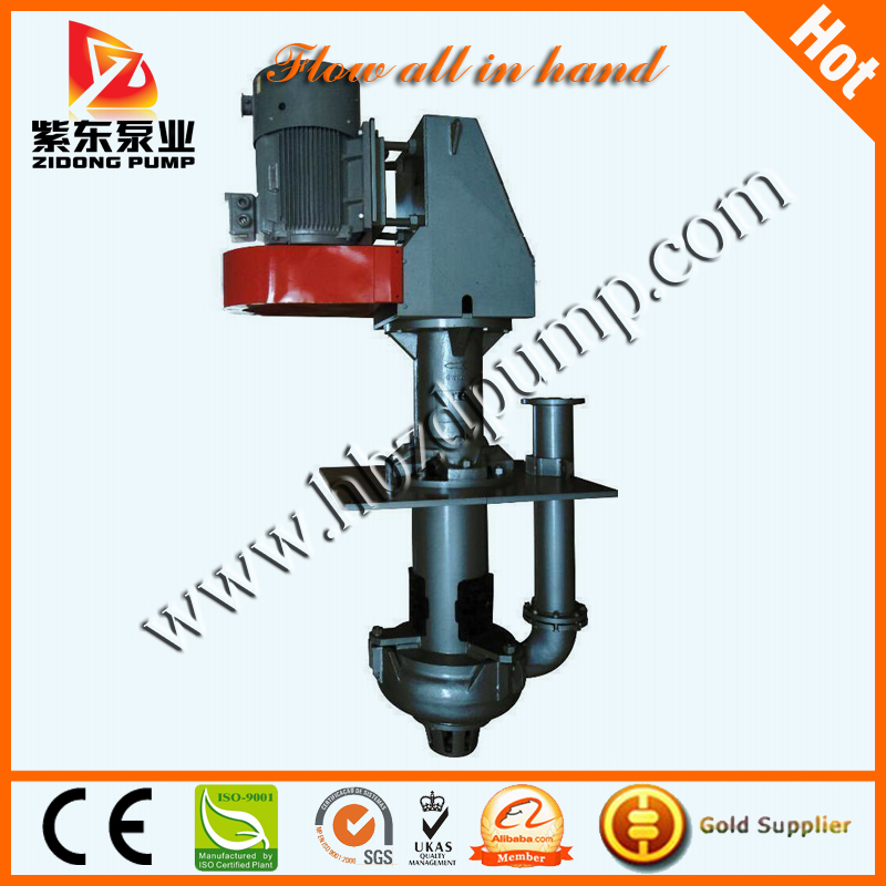 Vertical Slurry Pump Submersible Vertical Sump Water Pump