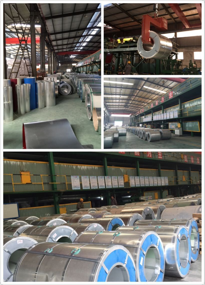Shandong Gengxiang Import & Export Trade Co., Ltd.