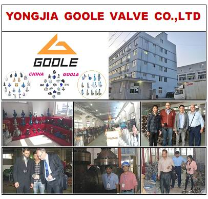 Zhejiang Golle Valve Co., Ltd.