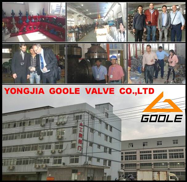 China Yongjia Goole Valve Co., Ltd.