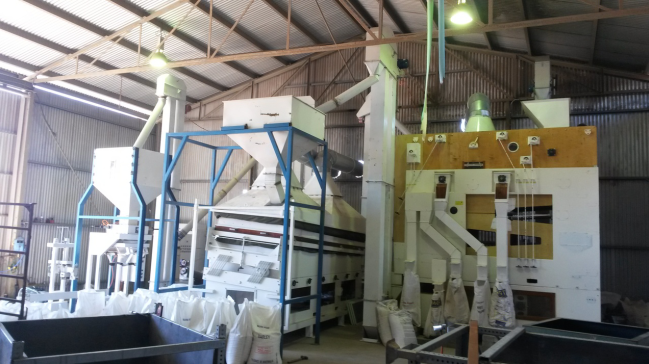 Best seed cleaning line / grain processing line