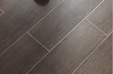 Wood Look Tile Floors  T8806