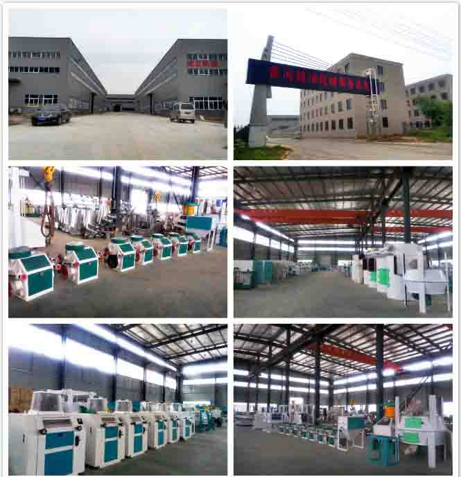 Henan Chengli Grain & Oil Machinery Co., Ltd.