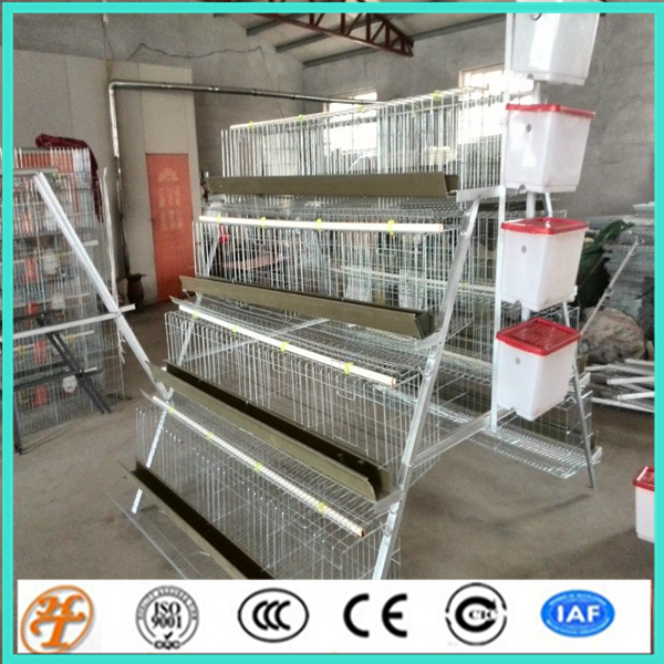 A Type 3 Tiers, 4 Tiers 96,120,160 Chicken Automatic Laying Hen Used Poultry Cage