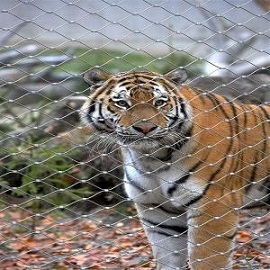 Flexible X-Tend Wire Rope Mesh Fence for Zoo Park