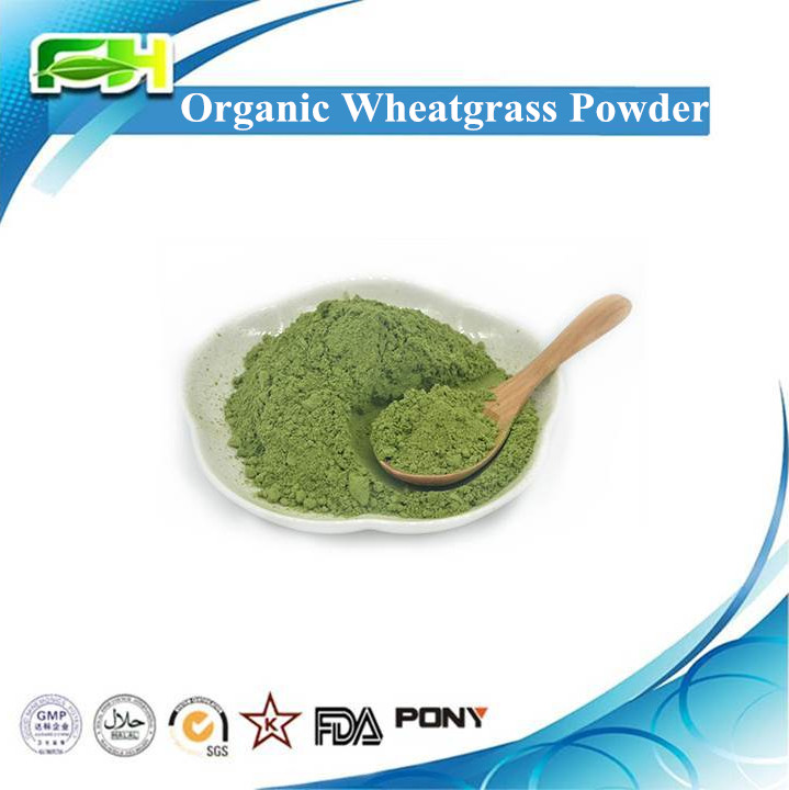 EOS & USDA Certified Organic Wheatgrass Powder