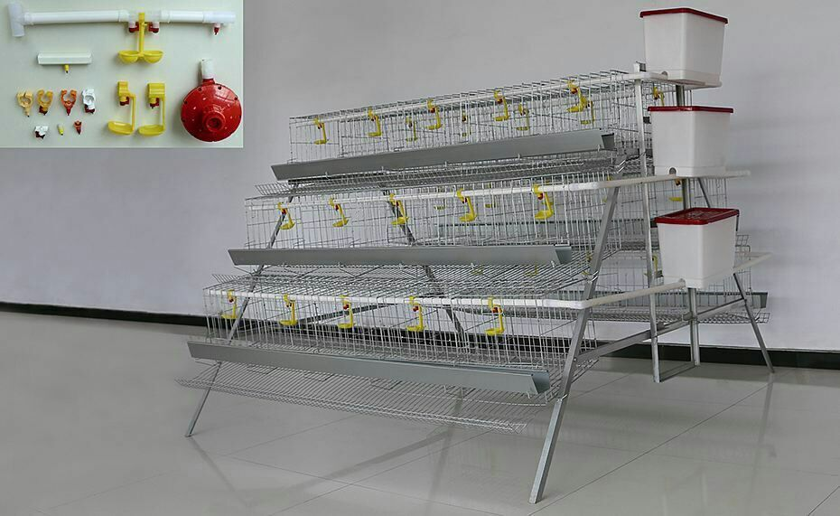 A type 3 tiers 4 tiers 96120160 chicken automatic laying hen used poultry cage
