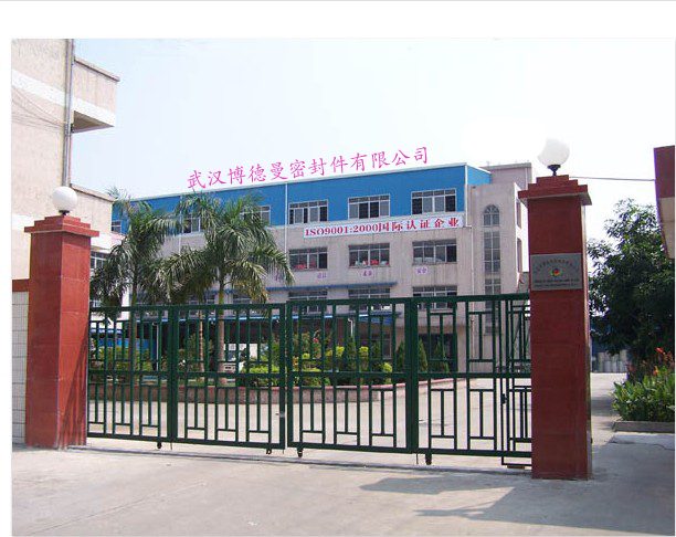 Wuhan Burdmann Co., Ltd.