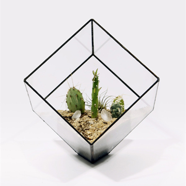 10 10 Cm Metal Frame Square Glass Terrarium Home Decoration Glass