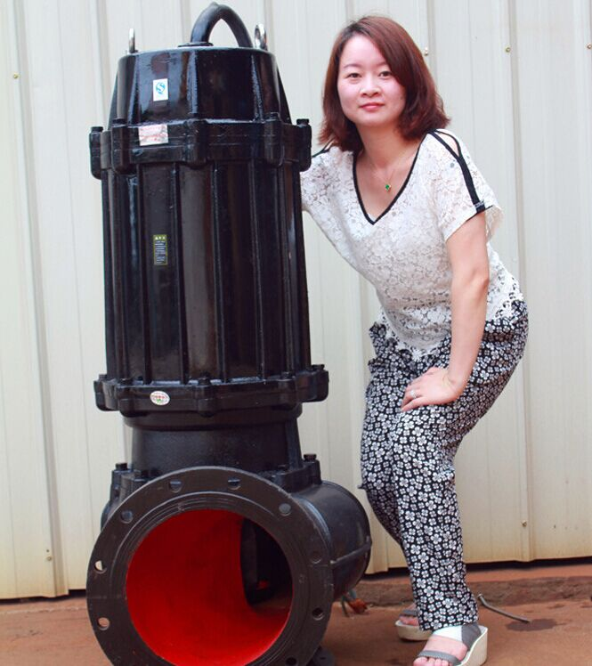 cast iron 100m3h electric submersible sewage pump price