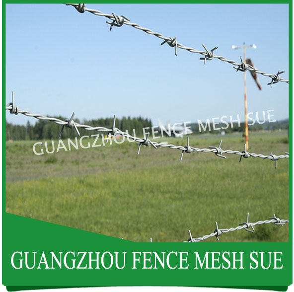Anti theft galvanised barb wire fence philippines for security anti theft galvanised barb wire fence philippines for security greentooth