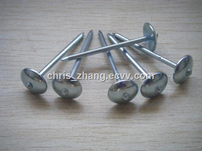 Top Quality Galvanized Roofing Nail Of 8 Boxes 25kg /Carton, Galvanized Roofing Coil Nail,