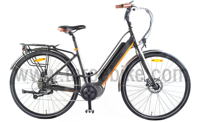 Trek Lady Electric Bike Woman 28inch Mid Mtor From China
