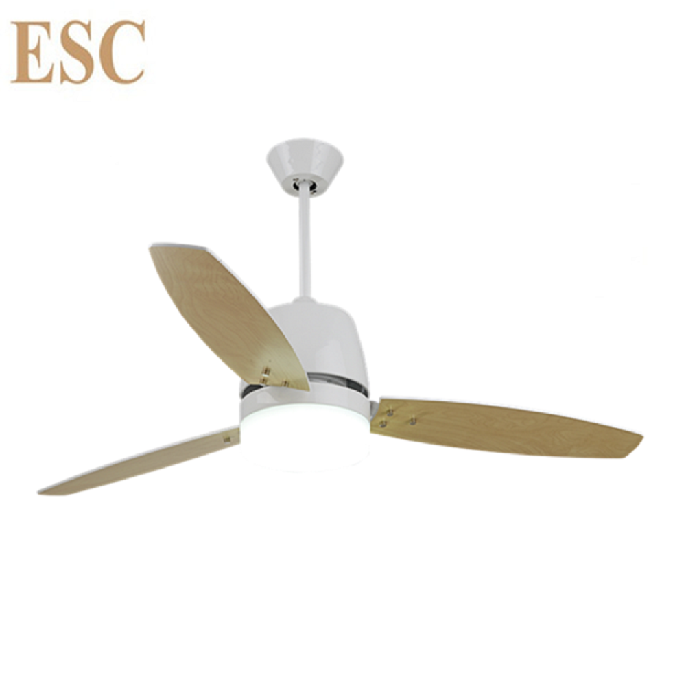 Two color reverse function 110 240v ceiling fan with light kits two color reverse function 110240v ceiling fan with light kits aloadofball Images