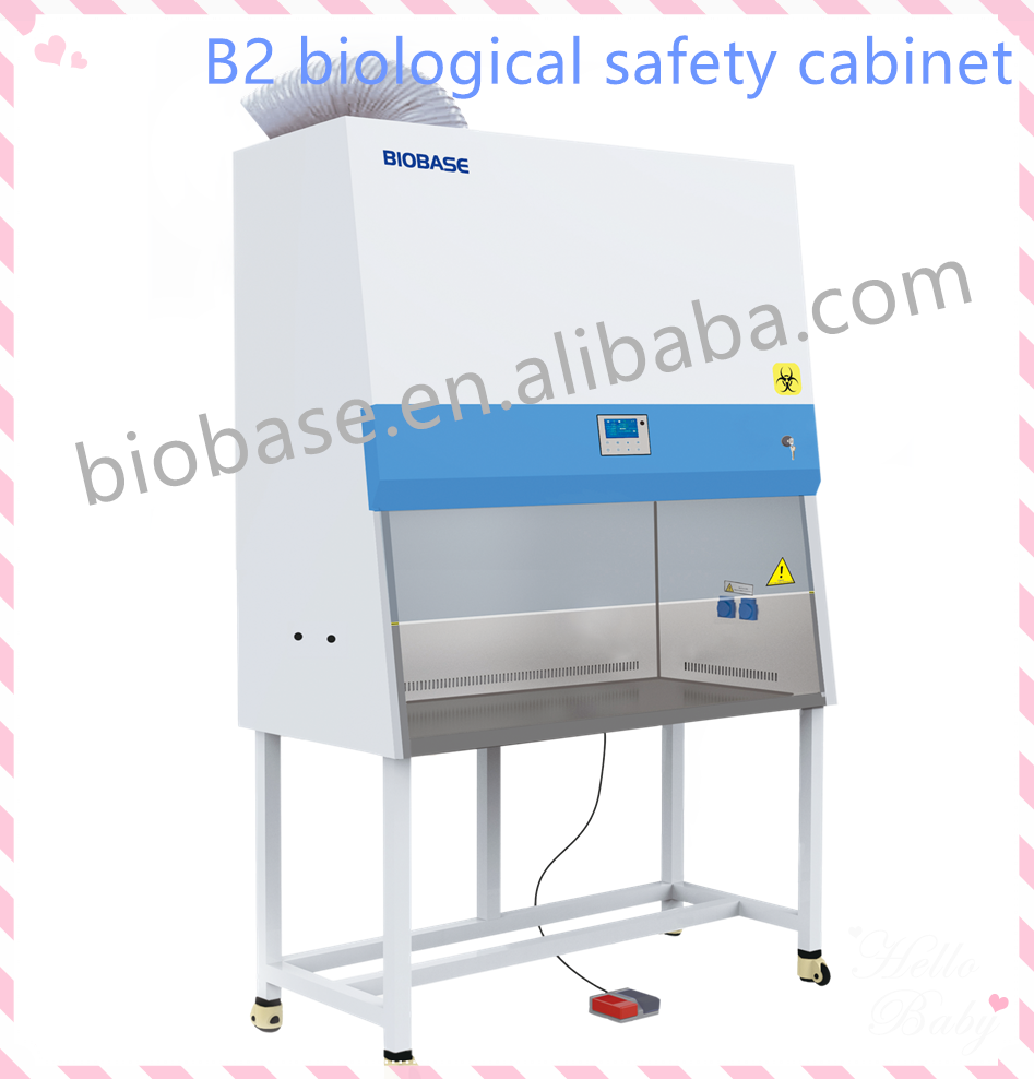 Class II B2 Biological Safety Cabinet Price, Biobase Biosafety Cabinet, Laminar Flow Cabinet with Filter