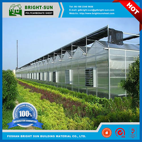 Bright Sun Polycarbonate Greenhouse Sheet for Hydroponic Systems