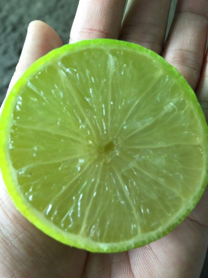 Fresh Lime seed and seedless