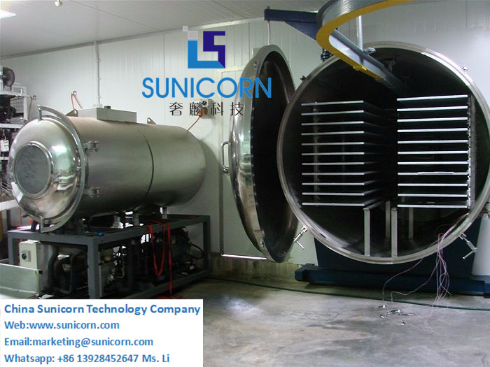 Professional Manufacture Food Vacuum Freeze Dryer, Vacuum Freeze Dryer for  Fruit & Vegetable, Meat, Low Price