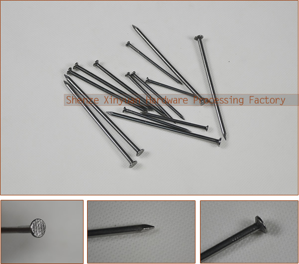 common nails construction common wire nail made in shijiazhuang shenze xinyuan factory