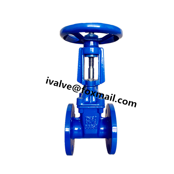 DIN F4 Rising Stem Gate Valve