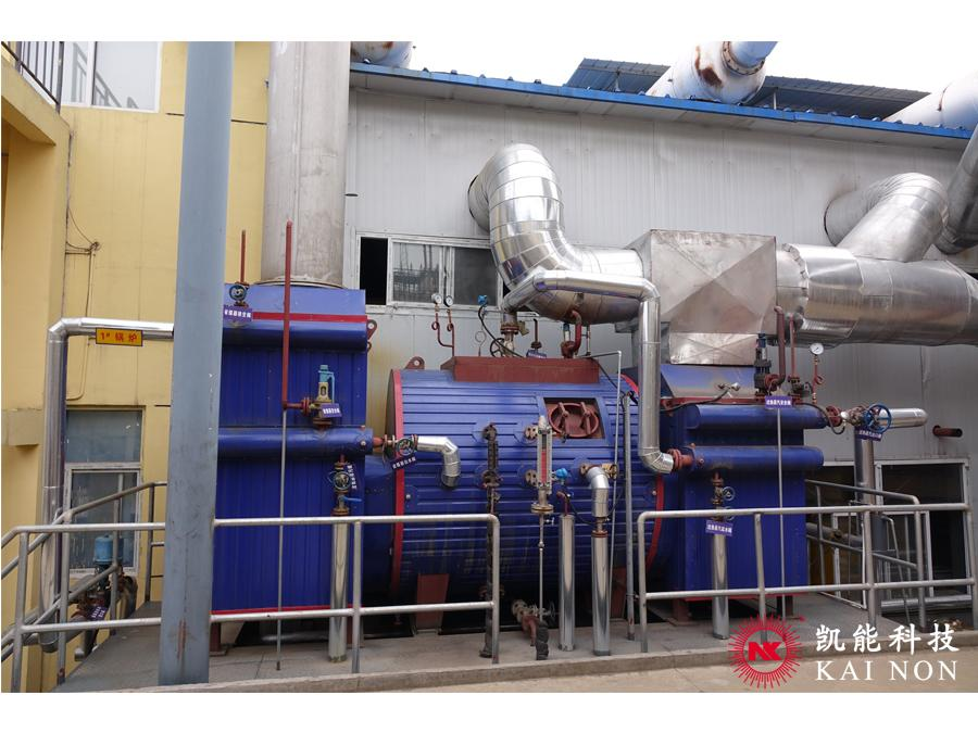 Flue Gas Waste Heat Steam Boiler for Power Generation Project ...