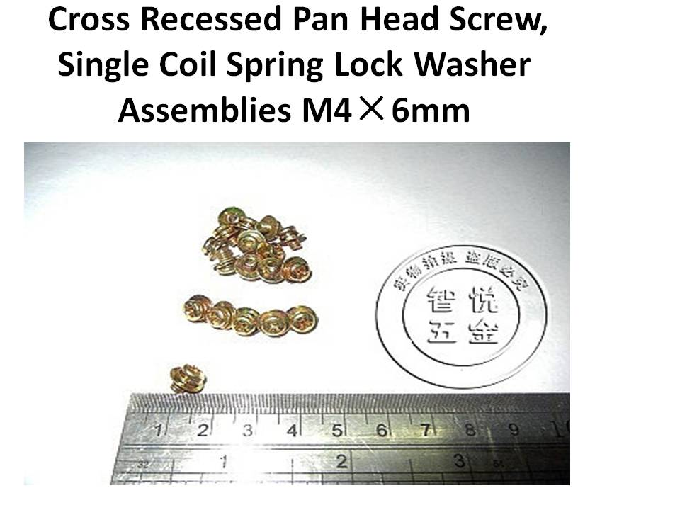 Pan Head AssembliesSpring Lock Washer and Plain WasherSems Machine Screws M3M4M5M6