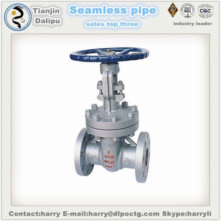 pipe fittings oil and gas ball non Return valve Swing check valve
