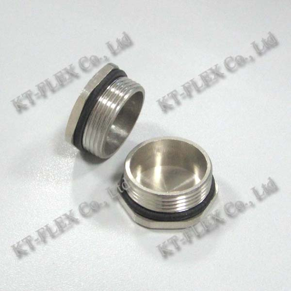Stainless steel brass hex plug