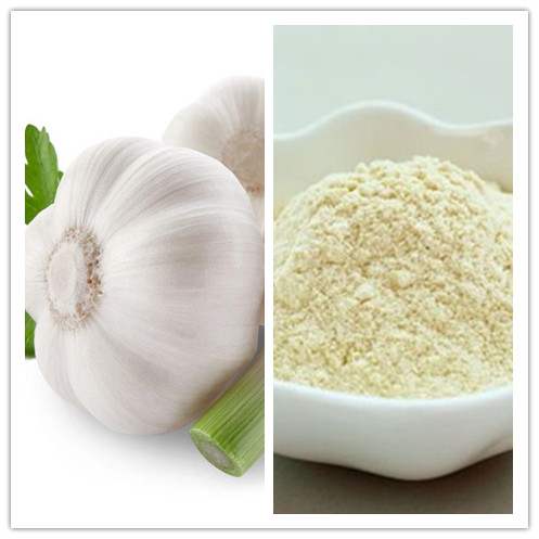 Natural High Quality Garlic Powder