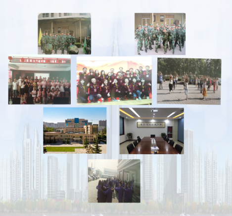 Anping Maoxin Metal Net Co., Ltd.